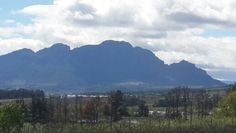 Simonsberg mountain - most wellknown Stellenbosch backdrop. #simonsberg #Stellenbosch
