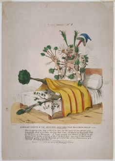 Philadelphia Museum of Art - Collections Object : Singular Effects of the Universal Vegetable Pills on a Green Grocer! A Fact!