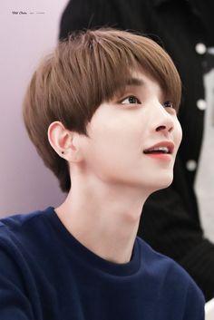 Listen to every Seventeen track @ Iomoio Woozi, Wonwoo, Jeonghan, The8, Seungkwan, Jisoo Seventeen, Joshua Seventeen, Seventeen Debut, Seventeen Memes