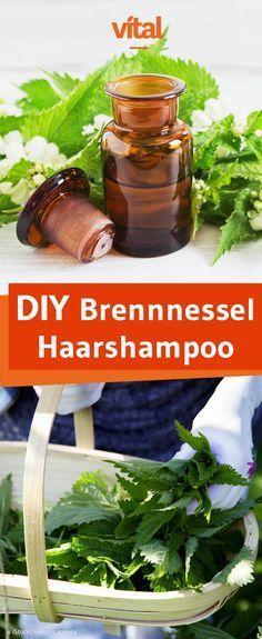 Brennnessel Shampoo selber machen: Wie wäre es mit einem Haarshampoo mit Brennnesseln? Die natürlichen Kräuter fördern nicht nur die Durchblutung, sie regen zudem auch das Haarwachstum an.