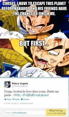 ROFL, this is funny Vegeta s Pride