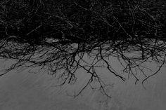 "Saatchi Art Artist Fabio Santagiuliana; Photography, ""Untitled -  Limited Edition 50 "" #art"