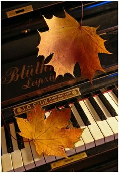 Autumn music inspiration.  It will be here soon! TG