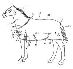 Horse Blanket Cheat Sheet