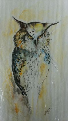 EN LAMINA Owl, Bird, Animals, Animais, Animales, Animaux, Birds, Owls, Animal