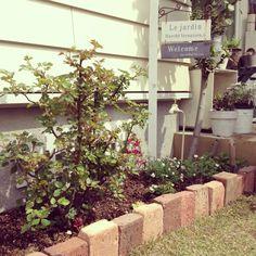 お庭や玄関周りには、やはり緑やお花があるとすてきですよね。プロに頼むともちろんきれいに仕上がりますが、費用もかなりかかりますが、DIYで自分好みの花壇を作っている実例もたくさんあるんです。自慢の花壇を作るための参考になるアイデアを集めてみました。
