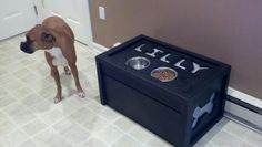 Lilly's new dog dish holder with dog food storage underneath.  Made by my awesome husband!