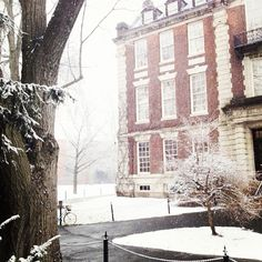 Snow at Smith College