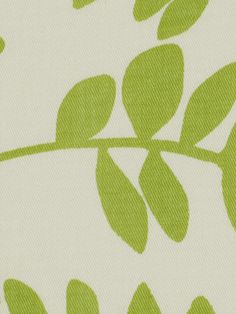 Botany Flora Leaf by Robert Allen@Home Fabric...28.