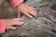 Tips for taking nature walks with kids