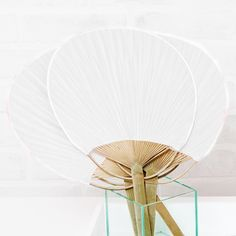 Paddle Fan White - Shop on WeddingWire! Order Of Wedding Ceremony, Wedding Fans, Wedding Ring Box, Wedding Favours, Dream Wedding, Wedding Ideas, Wedding Bells, Wedding Stuff, Wedding Flowers