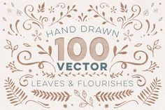 100+ Vector Leaves + Flourishes by everytuesday on Creative Market