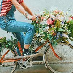 good morning 🌿🌿🌿 • . . . . . . . . . . #flowershop #flowerlover #flowerlovers #flowerpower #flowerphotography #instadaily #instagood #instaflower #flowersofinstagram #photooftheday #bouquetoftheday #flowersoftheday #ig_flowers #flowers_ig #flowers_igers #pampa #pampaparis #vsco #vscocam #vscobest #vscoflowers #paris #parisfleurs #fleursparis #bouquetparis #fleuriste #fleuristeparis #bicycle #flowerbicycle #parisjetaime