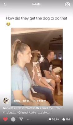 Crazy Funny Videos, Funny Video Memes, Crazy Funny Memes, Funny Relatable Memes, Funny Animal Photos, Funny Animals, Funny Pictures, Funny Cute, Really Funny