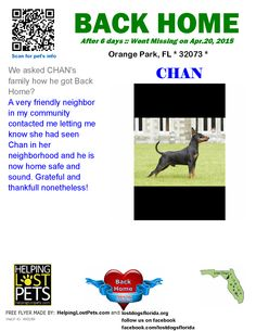 Helping Lost Pets   Dog - Doberman Pinscher - Back Home