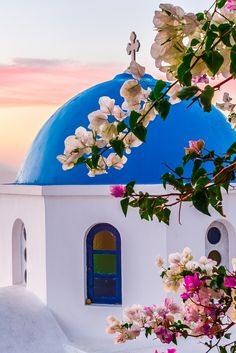 Bougainvillea, Oia village, Santorini island, Greece. - selected by www.oiamansion.com