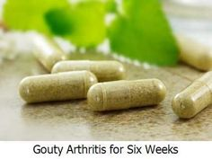 Gouty Arthritis for Six Weeks -  Since gouty arthritis attack happens uric acid floods your bloodstream it's important to keep it under control.