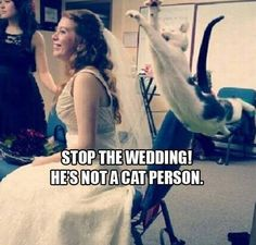 Funny Pictures 24/7 @ http://funnypictures247.com/post/funny-pictures-1314/ #Funny