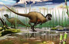 Kulindadromeus! Say it like a Russian! (A new feathered ornithschian dinosaur,)