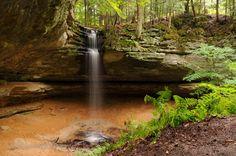 michigan nature | ... Contest Winner Neil Weaver Accepts Prize | Michigan Nature Association