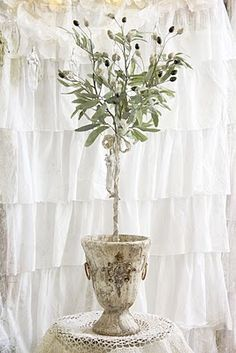 olive topiary + great urn