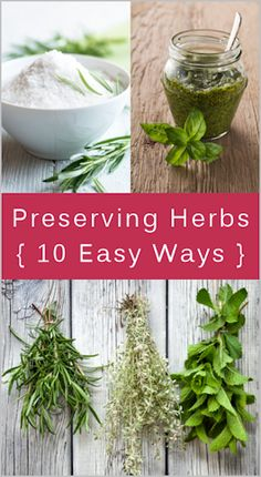 Ten Easy Ways to Preserve Herbs. Enjoying a big bounty of herbs from the garden this year? Fresh is best when it comes to cooking with them, but here are ten easy ways you can preserve them for year-round use Herbal Remedies, Natural Remedies, Unique Garden, Pot Jardin, Spices And Herbs, Snacks Für Party, Growing Herbs, Permaculture, Food Hacks