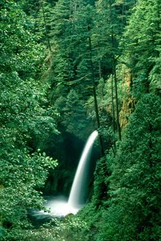 Metlako Falls, OR   © Marsha K. Russell