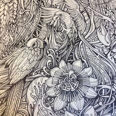 Moleskine Drawing Birds Passion Graphics Ivinniart