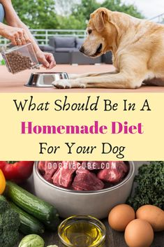 Dishing up healthy homemade dog food is easy and fun. No need for complicated recipes. DIY Home made maybe a better option. Here're some tips on what's a good formula for a homemade diet for your dog. Pumpkin Dog Treats, Homemade Dog Treats, Healthy Dog Treats, Homemade Food For Dogs, Homemade Recipe, Make Dog Food, Best Dog Food, Pet Food, Good Food For Dogs