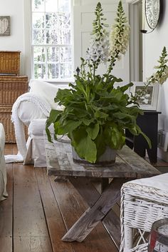 love the rustic gray