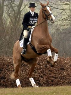 Zara Phillips in action! Do you have any pins of horse-riding royalty?