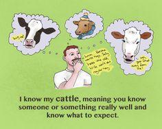 Yo me conosco mi ganado