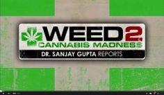 WEED 2 - Cannabis Madness - Dr. Sanjay Gupta Reports