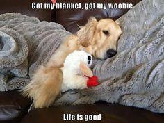 Got my blanket, got my woobie Life is good
