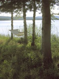 Lake in northern Sweden     Life is a Hammock