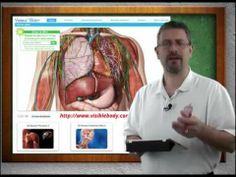 Mr. Ford's Anatomy & Physiology: Muscles of Facial Expression (9 of 20) - YouTube