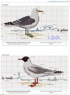 Sea Birds 3/4