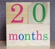 Product Listing Page - BB Blocks - Document your children or pet's age in photographs!