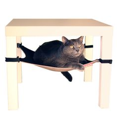 {Cat Crib} my cats (and dog!) would like these *everywhere* in the house!