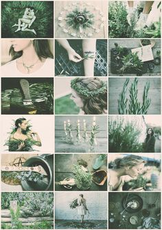 Rosemary Witch aesthetic requested by Fae Aesthetic, Aesthetic Images, Aesthetic Green, Witchcraft, Magick, Wiccan, Eclectic Witch, Slytherin Aesthetic, Season Of The Witch