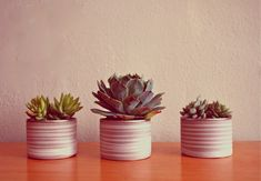 Tutorial: Recycled Mod Mini Succulent Pots - covering old almond tins with hemming tape...they look like clay now!