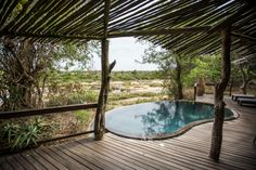 Use this plunge pool at Singita's Ebony lodge!  Singita: The best safari lodges in all of Africa