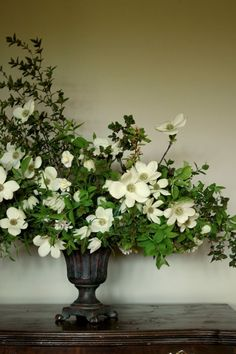 Pacific Dogwood: Spring arrangement by Clare Day Flowers. Adore the sophistication of a well done asymmetrical flower arrangement. Types Of Flowers, White Flowers, Beautiful Flowers, Dogwood Flowers, Arrangements Ikebana, Floral Arrangements, Deco Floral, Arte Floral, Floral Design