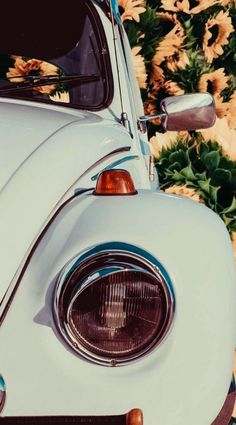 10 Basic Things Every Car Owner Should Know It's so easy to get a car these days. Blue Aesthetic, Aesthetic Vintage, Cellphone Wallpaper, Iphone Wallpaper, Van Vw, Suncatcher, Cute Cars, Volkswagen Jetta, Car Photography