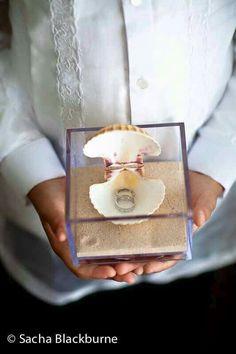 Beach shell wedding rings