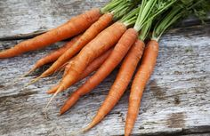 How to Grow Sweet, Delicious Carrots