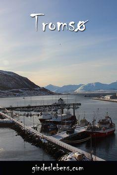 Tromsø - romantische Gassen, malerischer Hafen und Nordlichthotspot. Tromso, Stavanger, Lofoten, Reisen In Europa, Visit Norway, Midnight Sun, World Pictures, Winter Travel, Places To See