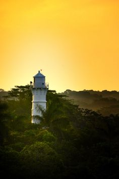 A Lighthouse stands tall in the jungle- like folliage along the bank of the Panama Canal, Atlantic Entrance.