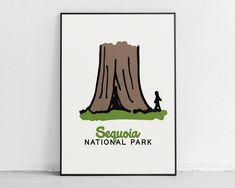 Sequoia National Park - Adventure Kids Decor - 16″ × 20″ / CG matt