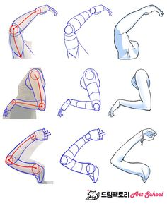 팔/팔드로잉/도형/도형화/인체/인체드로잉/드로잉/drawing/뼈/뼈대/손/hand/손그리기/그리기/그림/튜토리얼/팔꿈치 Anatomy Sketches, Anatomy Drawing, Anatomy Art, Drawing Sketches, Body Reference Drawing, Art Reference Poses, Figure Sketching, Figure Drawing, Drawing Anime Bodies